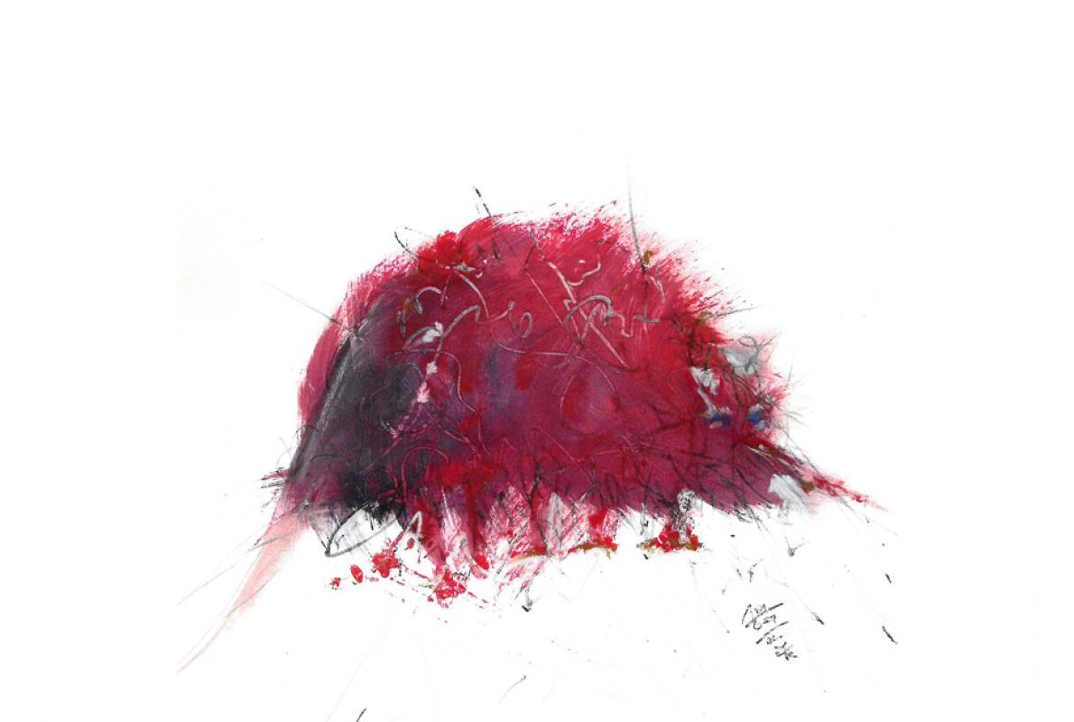 Igel, Aquarell auf Papier, 21 x 21 cm, September 2002 - Albrecht K. Scherer